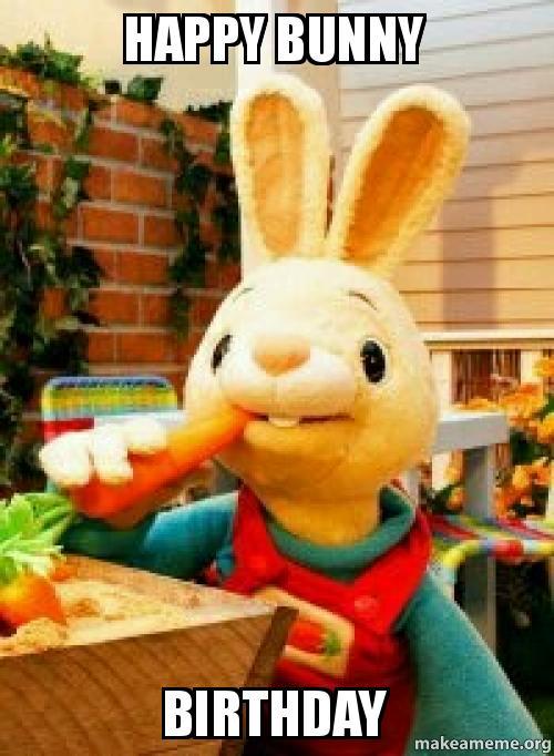 Funny Birthday Meme Reddit : Happy bunny birthday make a meme