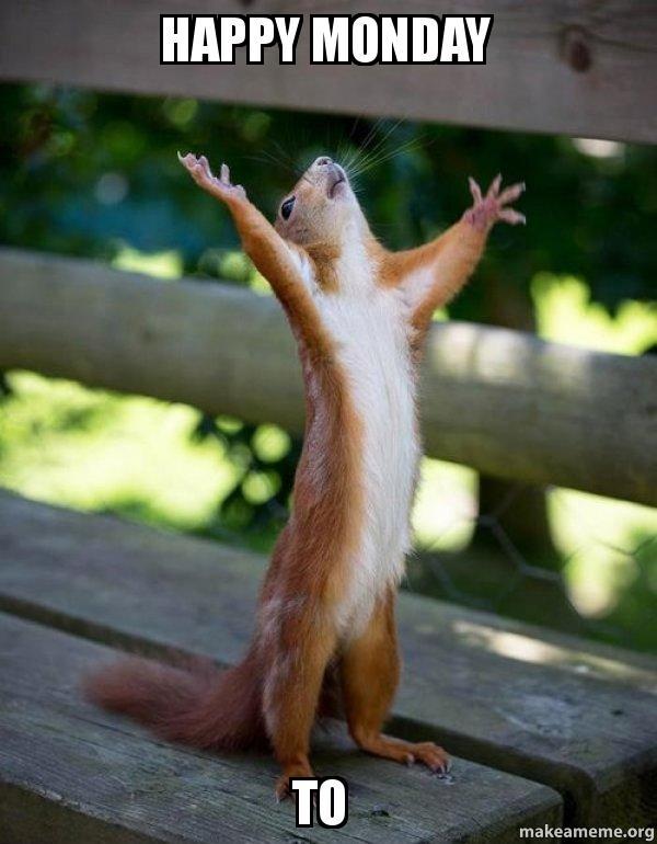 happy monday to 5u39rt happy monday to happy squirrel teresa make a meme