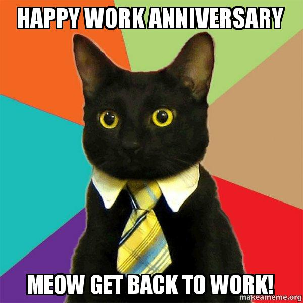 Happy Work Anniversary Meow Get Back To Work Business Cat Make