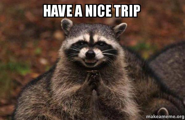 have a nice 9q02ur have a nice trip evil plotting raccoon make a meme