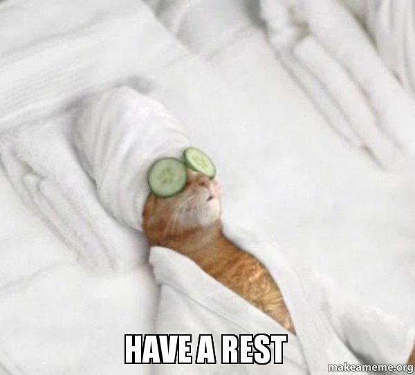 Cat Email Meme