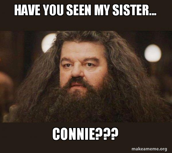 have you seen c0tdoz have you seen my sister connie??? hagrid i should not have,Connie Meme