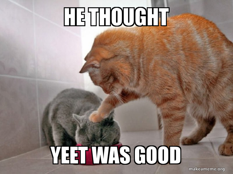 He thought Yeet was good - Anti yeet | Make a Meme