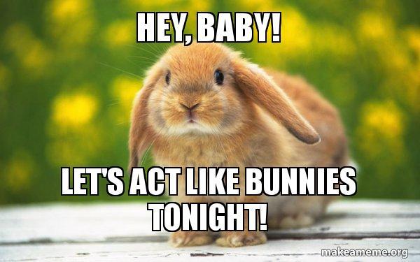 Hey Baby Let S Act Like Bunnies Tonight Regretful Rabbit