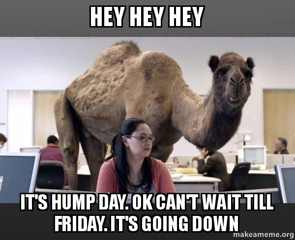 hey hey hey 8gk6vb hey hey hey it's hump day ok can't wait till friday it's going