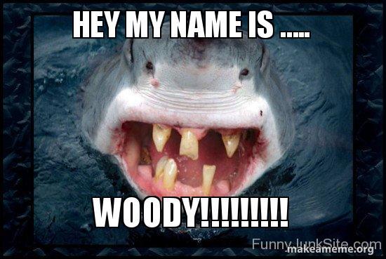 HEY MY NAME IS …   WOODY!!!!!!!!! - WOODY SHAR | Make a Meme