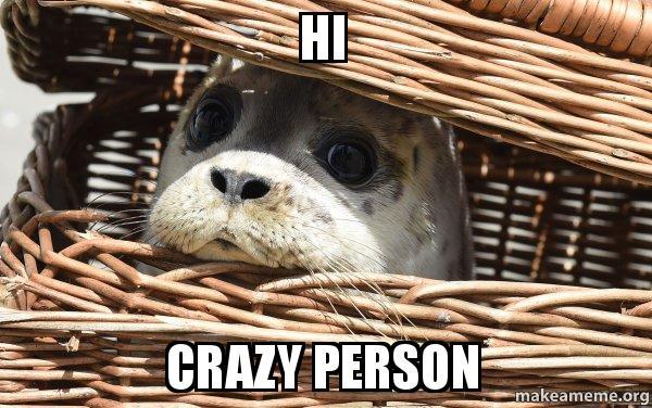 hi crazy person impending doom seal make a meme