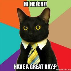 hi helen have hi helen!! have a great day p business cat make a meme