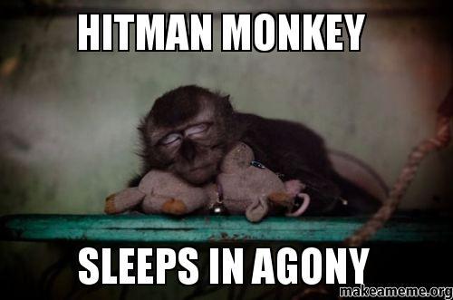 Hitman Monkey Sleeps In Agony Make A Meme