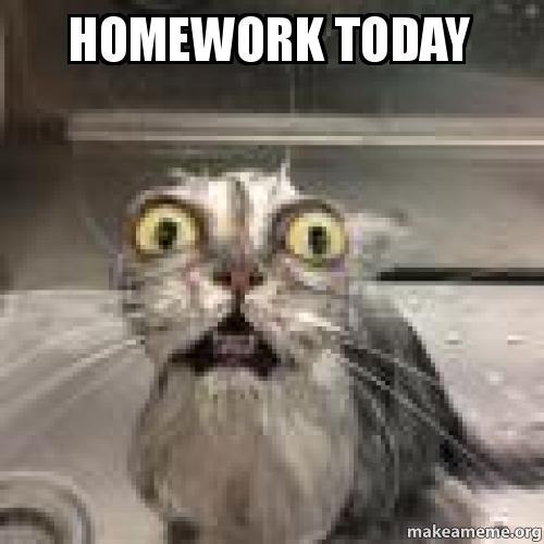 Homework today