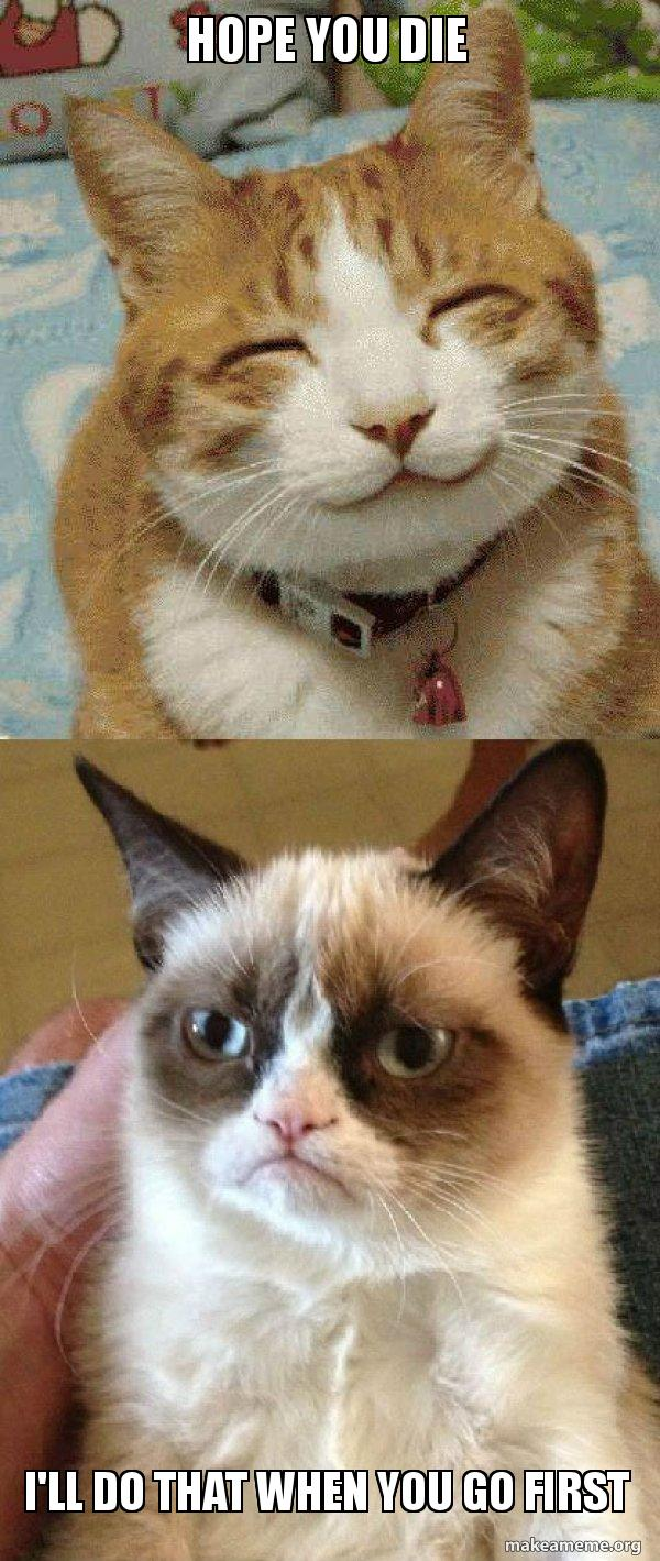Hope you die I'll do that when you go first - Grumpy Cat vs