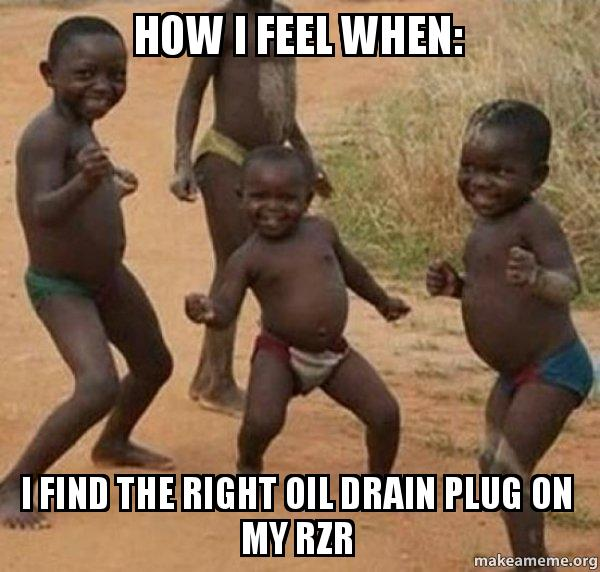 How I Feel When I Find The Right Oil Drain Plug On My Rzr Rzr Oil