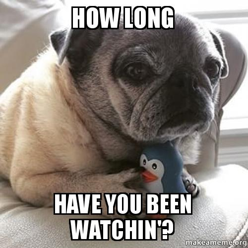 How Long Have You Been Watchin'?