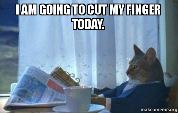 I am going to cut my finger today. - Sophisticated Cat ...