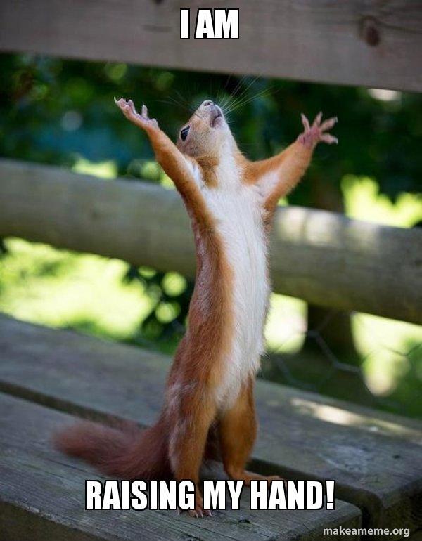 i am raising i am raising my hand! happy squirrel make a meme