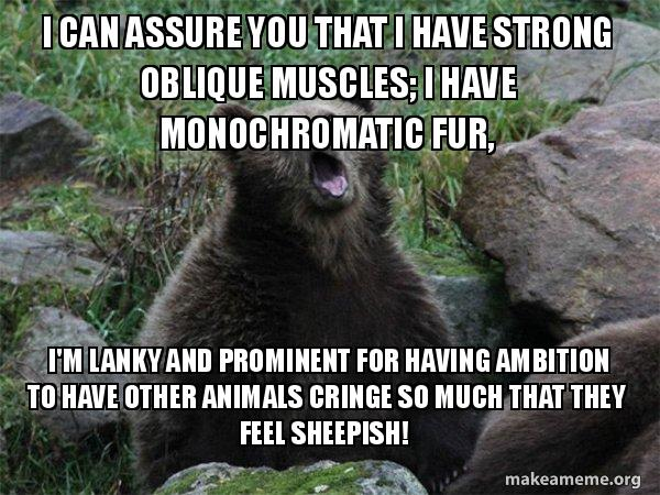 I Can Assure You That I Have Strong Oblique Muscles I Have
