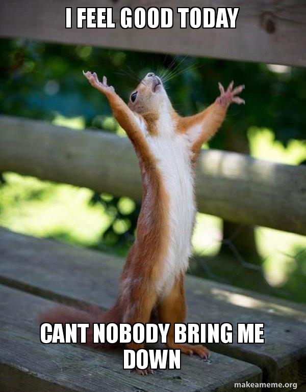 i feel good 1imrfh i feel good today cant nobody bring me down happy squirrel,Bring Down Meme