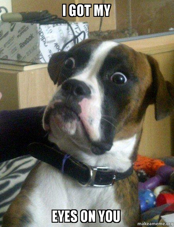 i got my tkdhlu i got my eyes on you skeptical dog make a meme