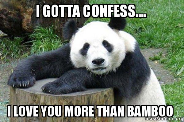 I Gotta Confess I Love You More Than Bamboo Confession Panda