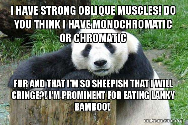 I Have Strong Oblique Muscles Do You Think I Have Monochromatic Or