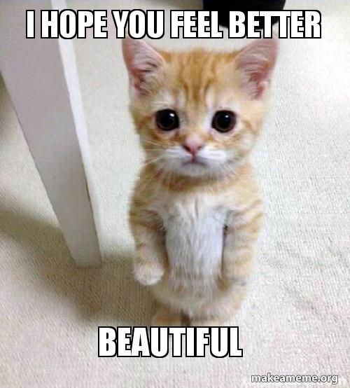 I Hope You Feel Better Beautiful Make A Meme