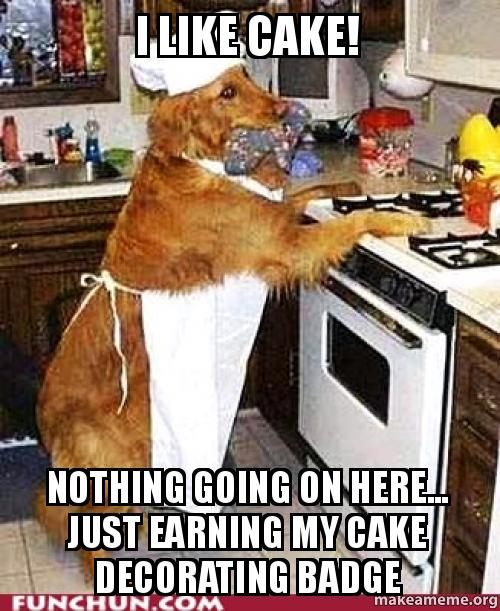 I like cake! Nothing going on here... just earning my cake ...