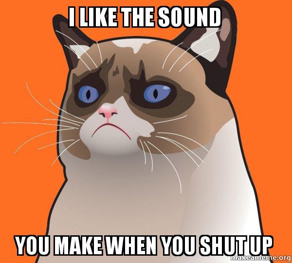 i like the sound you make when you shut up   cartoon