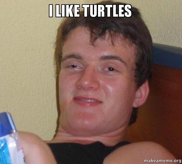 i Like Turtles Picture 10 Guy i Like Turtles