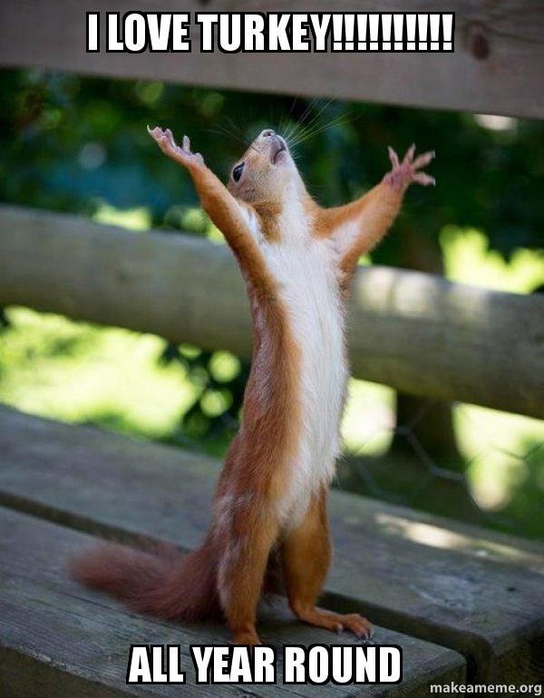i love turkey y1xp9f i love turkey!!!!!!!!!! all year round happy squirrel make a meme