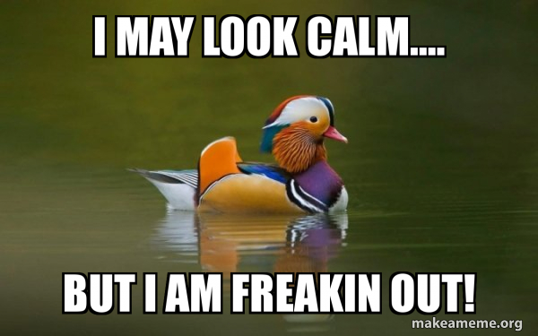 Fashionable Advice Mallard meme