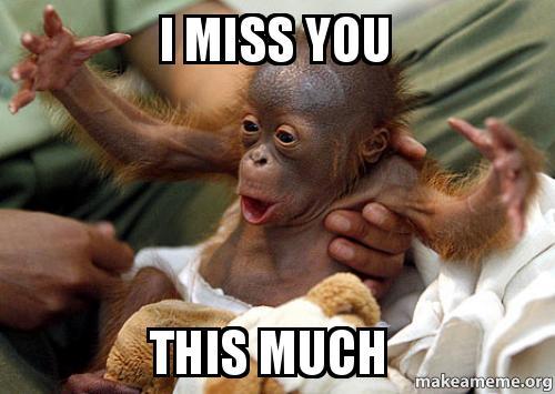 i love you this much cute meme - photo #17