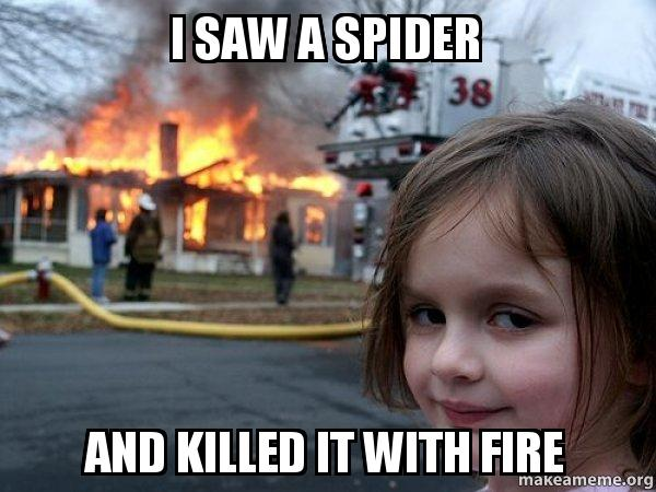 I Saw A Spider And Killed It With Fire My Dad Make A Meme
