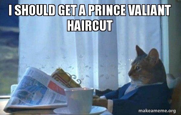 I should get a Prince Valiant haircut - Sophisticated Cat