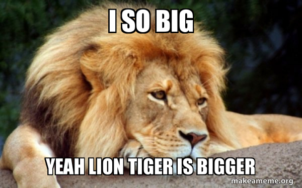 Confession Lion meme