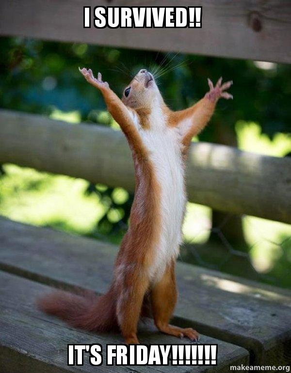 I Survived Friday >> I Survived It S Friday Happy Squirrel Make A Meme