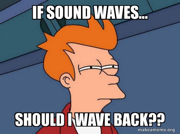 If sound waves... Should I wave back?? - Futurama Fry | Make a Meme