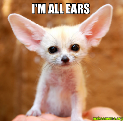 [Image: im-all-ears.png]
