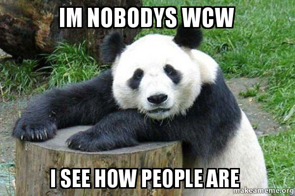 Im Nobodys Wcw I See How People Are Confession Panda Make A Meme