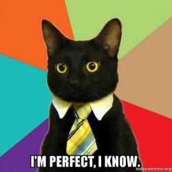 i'm perfect, i know. - Business Cat | Make a Meme, Nutrition