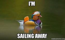 i m sailing away fashionable advice mallard make a meme
