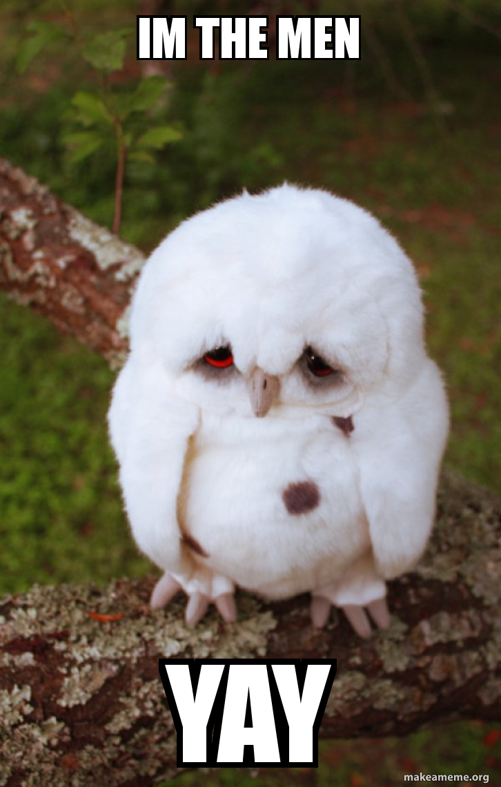 Im The Men Yay Sad Owl Make A Meme Yay a meme u can send to your friends but don't upload it again and say that it's yours cause it's not so give me. im the men yay sad owl make a meme