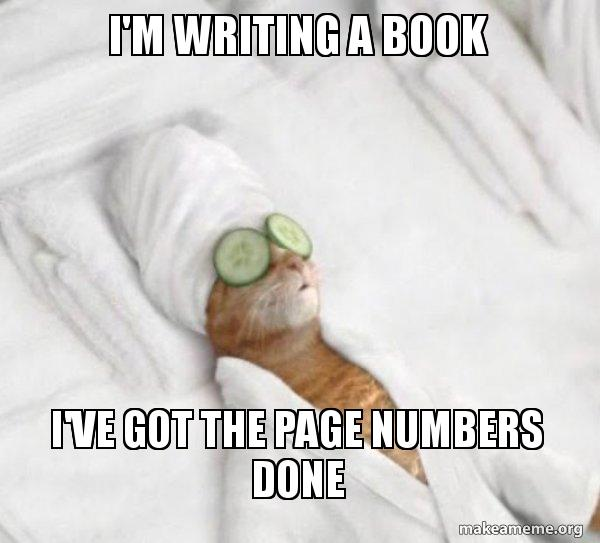 I'm writing a book I've got the page numbers done - Pampered Cat Meme    Make a Meme