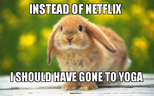 Instead of Netflix I should have gone to Yoga - Regretful Rabbit