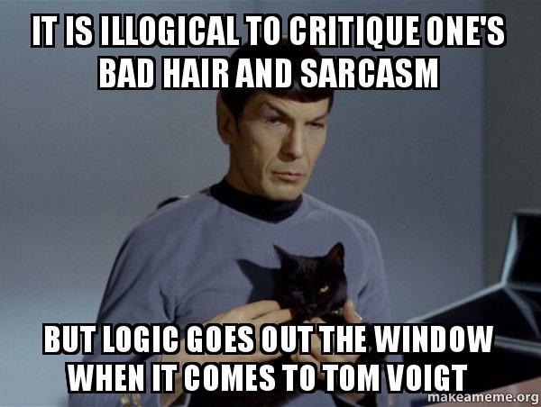 Bad Cat  Critique