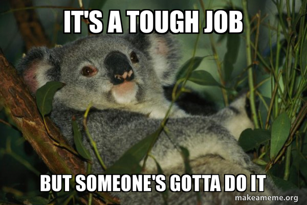 it's a tough job but someone's gotta do it - Laid Back Koala | Make a Meme