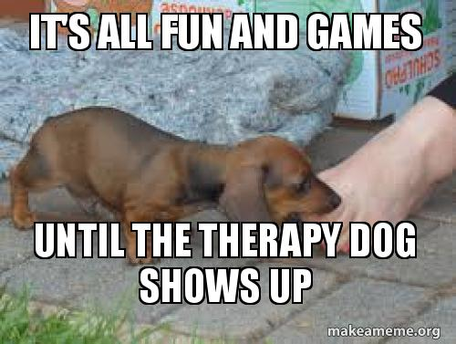 It S All Fun And Games Until The Therapy Dog Shows Up Make