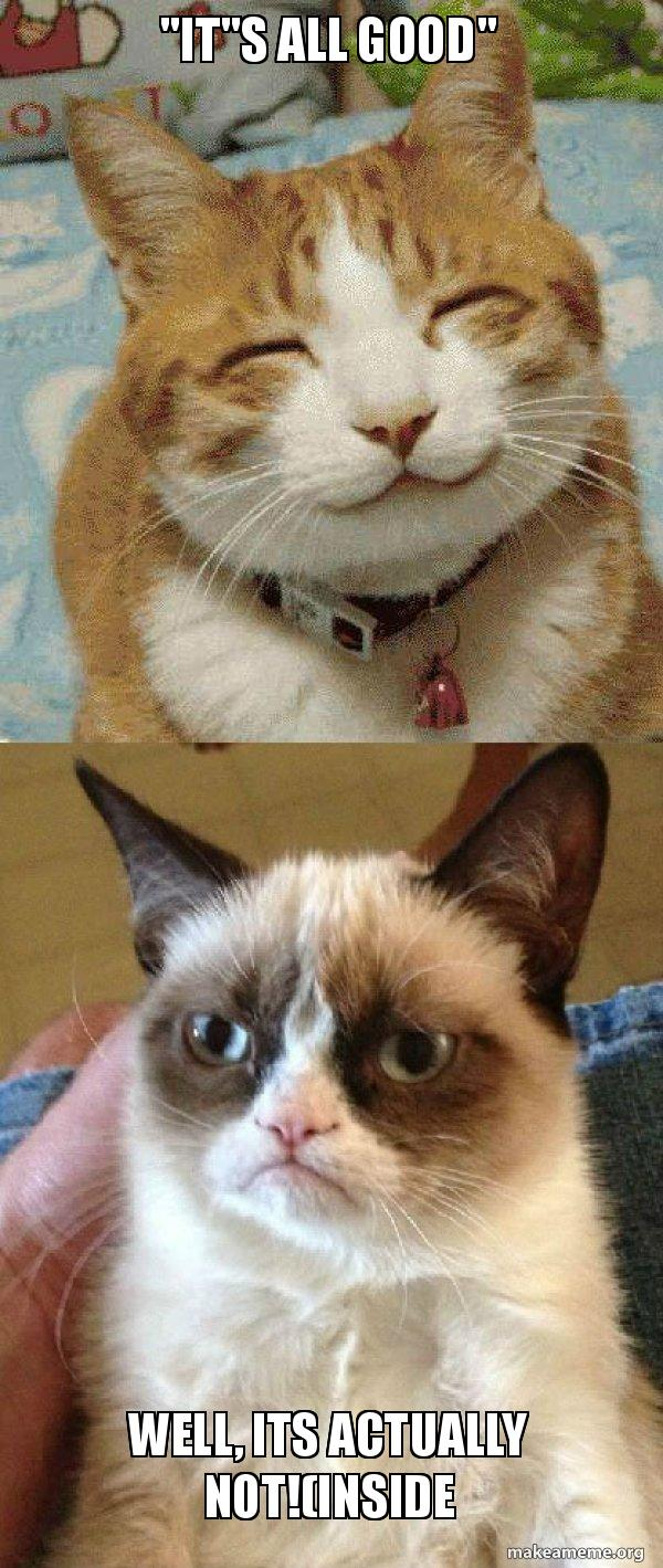 Its All Good Well Its Actually Notinside Grumpy Cat Vs Happy