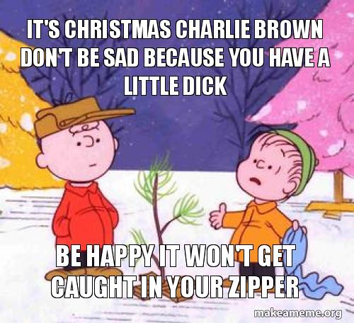 It S Christmas Charlie Brown Don T Be Sad Because You Have A Little