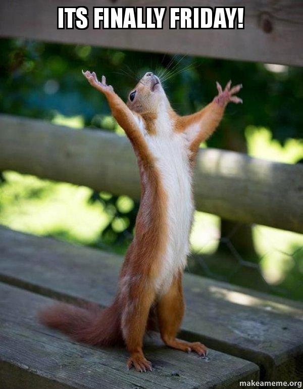 Finally Friday Funny Meme : Its finally friday happy squirrel make a meme