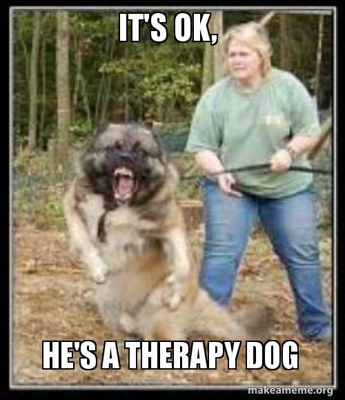 It S Ok He S A Therapy Dog Make A Meme